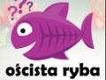 Oścista Ryba - Kanał o chrześcijaństwie, bez zbędnej spiny