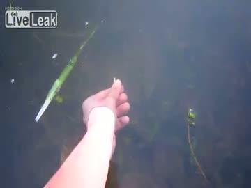 """Łapanie ryb """"na rękę"""""""