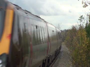 Gołąb w starciu z pociągiem