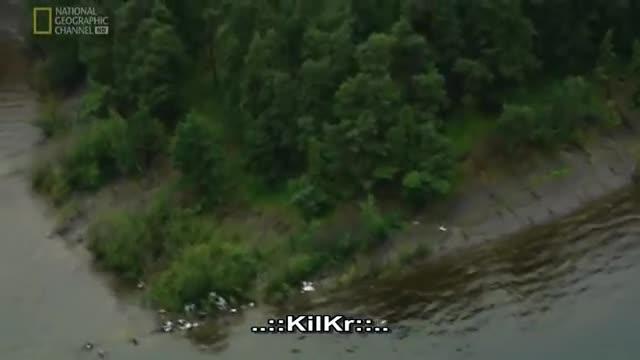 Masakra w Norwegii.  Dokument