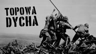 II wojna światowa to konflikt, który pozostawił krwawą plamę w historii świata. Tysiące istnień, setki wystrzelonych naboi i straty liczone w milionach - w tym odcinku przedstawiamy 10 przerażających statystyk  II wojny światowej.   SPRAWDŹ TEŻ: Topowa Dycha - 10 mało znanych faktów na temat Hitlera https://www.youtube.com/watch?v=Wef5DCpQnOo  http://www.facebook.com/topowadychapl http://www.instagram.com/topowadycha http://www.twitter.com/topowadycha  Odliczanie czas zacząć! Dyszka faktów, ciekawostek lub po prostu informacji, które raz cię rozbawią, a kiedy indziej wzruszą do łez. Od teorii konspiracyjnych, przez nietypowe wydarzenia, aż do najdziwniejszych wynalazków.  Program jest oficjalną polską wersją językową serii Alltime10s.